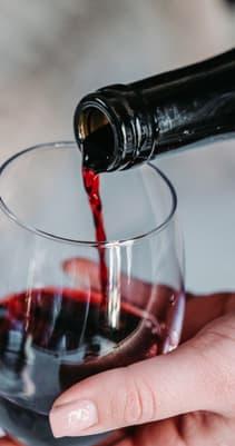 vin et gastronomie